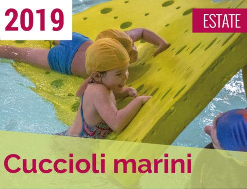 Cuccioli Marini ESTATE 2019