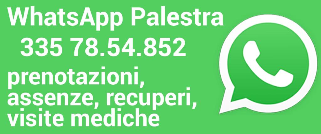 whatsapp palestra 2021